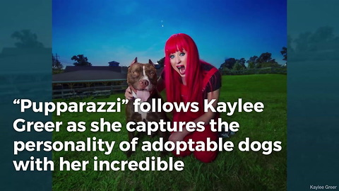 New Show 'Pupparazzi' Turns Shelter Dogs into Stars in Hopes of Finding Them Forever Homes
