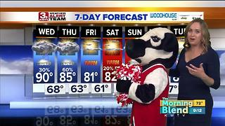 Fun Wx - Video
