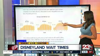 How to avoid long Disneyland waits - Video