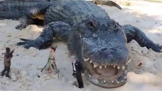 Peckish Alligator Chomps Han Solo Action Figure - Video