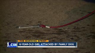 6-year-old girl critically injured after dog attack, dog shot by off-duty officer - Video