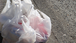 Support grows to ban plastic bags in Palm Beach County - Video