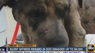 $9k reward offered after dog dragged by car - Video