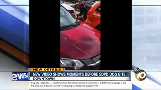New video shows moments before SDPD dog bite