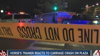 Horse's trainer reacts to carriage crash on Plaza - Video