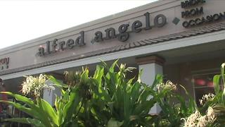 Alfred Angelo Bridal closing stores nationwide | Digital Short - Video