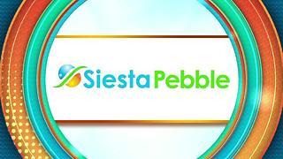 Siesta Pebble: Pebble Tec - Video
