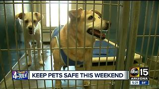 How to make sure pets are safe during July 4th celebrations - Video