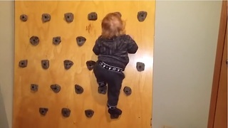 Baby scales homemade climbing wall with ease! Dad shows us how to build it