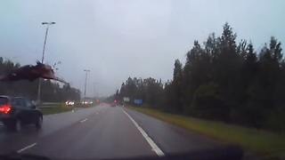 Intense dash cam footage of highway moose collision