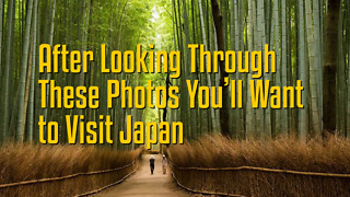 After Looking through these Photos You'll Want to Visit Japan - Video