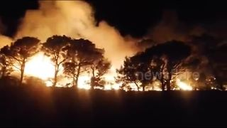 Wild fire rages in Montenegro - Video
