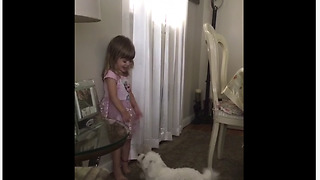 Puppy with zoomies adorably entertains laughing toddler - Video