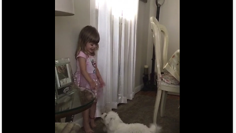 Puppy with zoomies adorably entertains laughing toddler