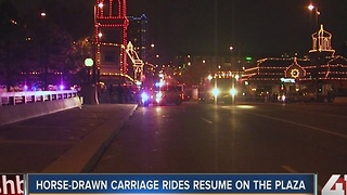 Horse-drawn carriages return to the Plaza after crash - Video