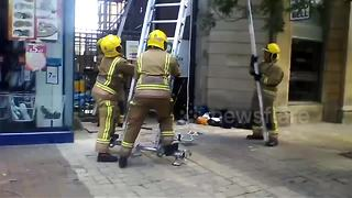 Firefighters save trapped seagull in central London - Video