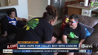 Family struggles to fund new treatment that could help Las Vegas boy battling brain tumor - Video