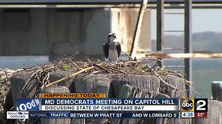 Md democratic lawmakers are meeting to discuss the Chesapeake Bay on Wednesday - Video