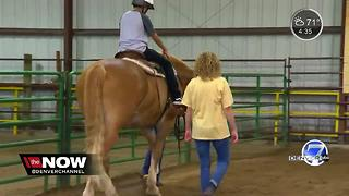 CSU Equine Center providing horse therapy to inner-city kids - Video
