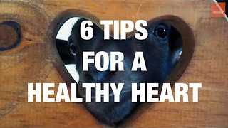 6 Tips For a Healthy Heart - Video