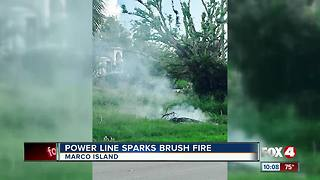 Brush fire caused by power line in Marco Island - Video