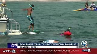 Encouraging ocean conservation through snorkeling in Boynton Beach - Video