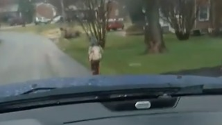 Father Punishes 'Bully' Son by Forcing Him to Run to School - Video