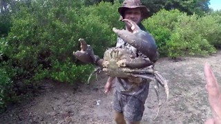 Man Dives Into Muddy Hole to Retrieve Enormous Crab in Most Australian Video You'll See Today - Video