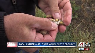 Rain, flooding impact farmers trying to harvest
