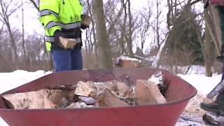 Wood Chopping Heroes: Holt neighbors come together to help a longtime community volunteer