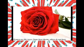 Women are like roses: Some have thorns, others do not have! [Quotes and Poems]