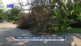 Debris cleanup taking a while in Tampa due to lack of trucks - Video