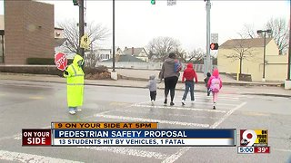 Pedestrian safety proposal