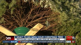 Several options available for recycling Christmas trees in Kern County