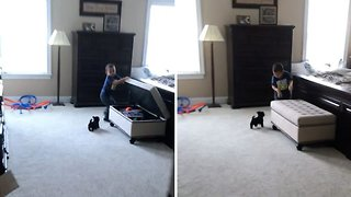 Petrifying Puppy! Little Toddler Is Terrified Of Adorable Dog