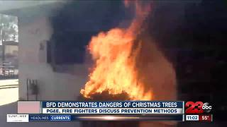 BFD demonstrate two Christmas trees burnings - Video