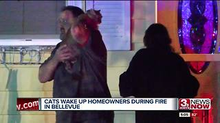 Bellevue couple says cats saved them from house fire - Video