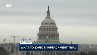 Impeachment trial begins: what to expect from the second trial