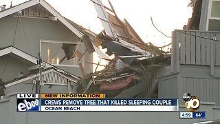Crew remove tree that killed sleeping couple in Ocean Beach