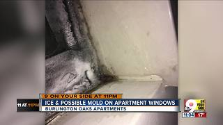 Burlington Oaks resident says her windows are covered in ice and mold - Video