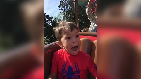 Boy Reacts to First Roller Coaster