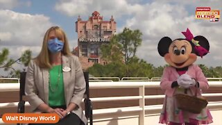 New experiences at Disney World | Morning Blend
