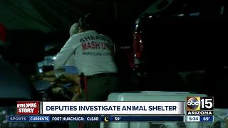 Deputies investigating animal shelter