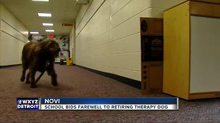 Novi school bids farewell to retiring therapy dog - Video