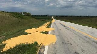 Fired Truck Driver Dumps Corn On Highway In Revenge, Plan Backfires  - Video