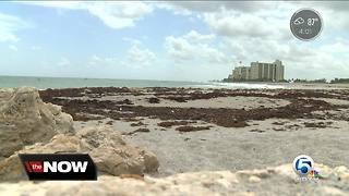 Beaches reopen in Palm Beach County Wednesday
