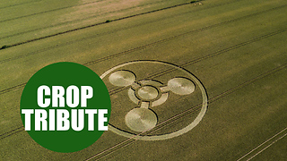 Crop circle created is a tribute to Novichock victim