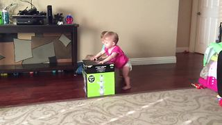 Twin babies compete in adorable box race - Video