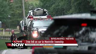 Woman killed after a tree falls on her car with an infant in the back seat - Video