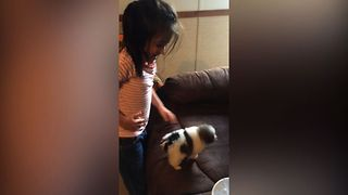 Girl Mistakes Tiny Dog For Hamster - Video